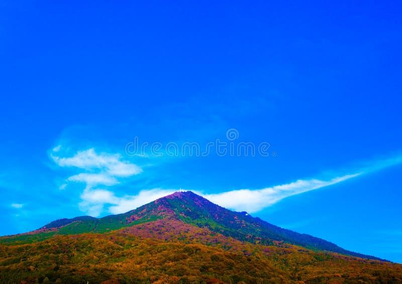 Smok jak kształt chmura fotografia royalty free