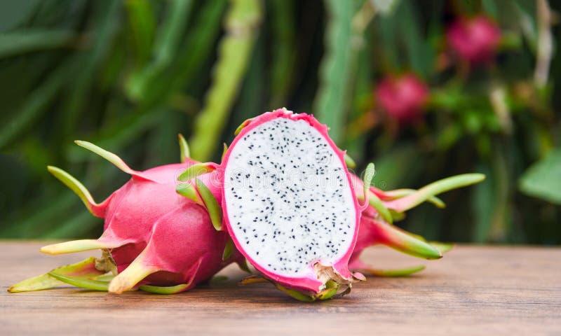 Smoka owocowy plasterek na drewnianym z smoka owocowego drzewa tłem - Świeży pitaya lata tropikalnej owoc pojęcie obrazy royalty free