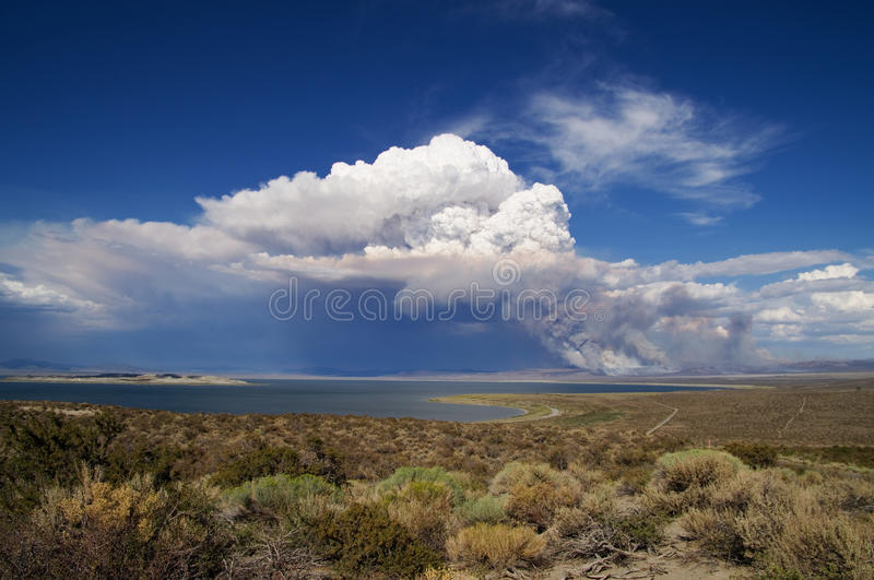 Smoke and cloud from forest fire royalty free stock photography