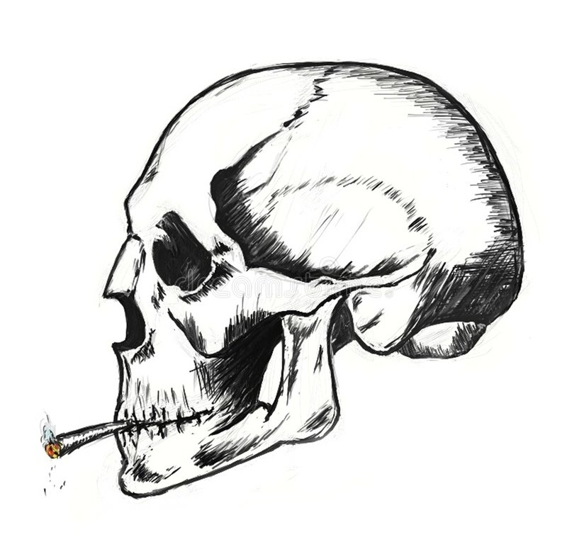 Download Smoke Until Death stock illustration. Image of insurance - 6952123