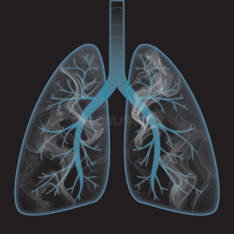 Smoke inside the lung vector illustration