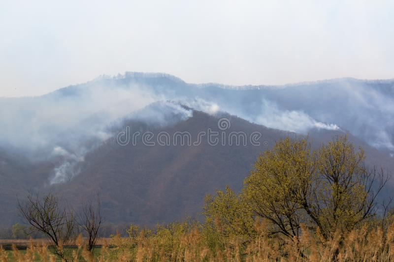Smoke in the mountains over a forest fire. In the spring, forest fires, caused by humans, are a frequent phenomenon that leads to the killing of trees and wild stock image
