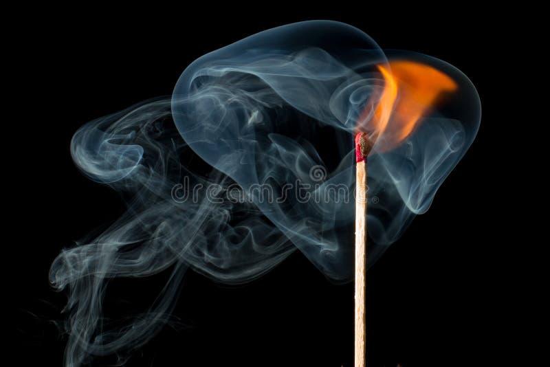 Smoke, Organism, Computer Wallpaper, Darkness stock photography