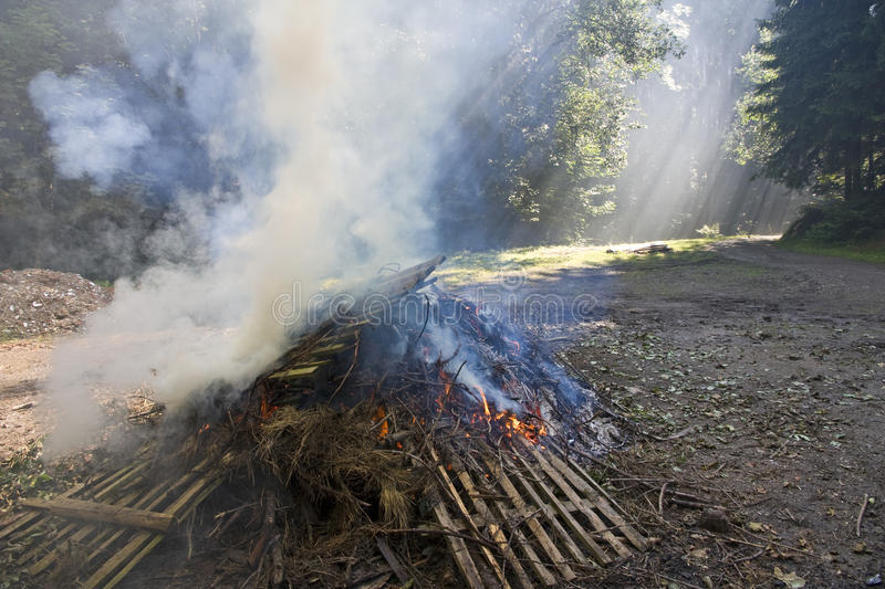 Download Smoke over fire stock photo. Image of natural, burning - 25884924
