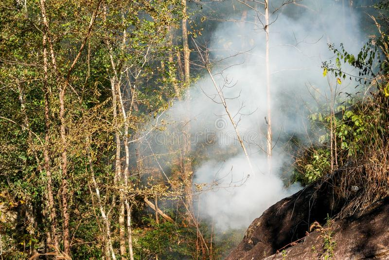 Smoke prairie fire. Dry grass blazes among bushes destruction of forests royalty free stock image