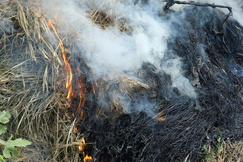 Smoke rising from the fire. royalty free stock photo
