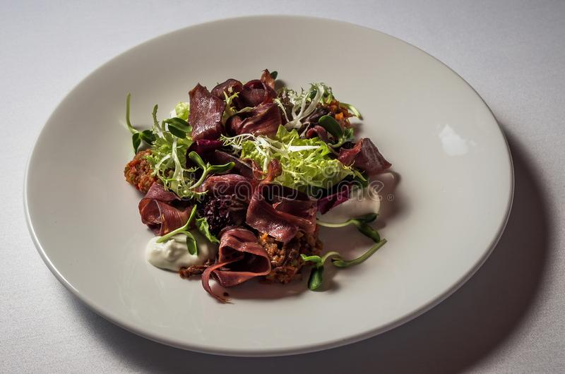 Smoked Duck Breast Salad royalty free stock photo