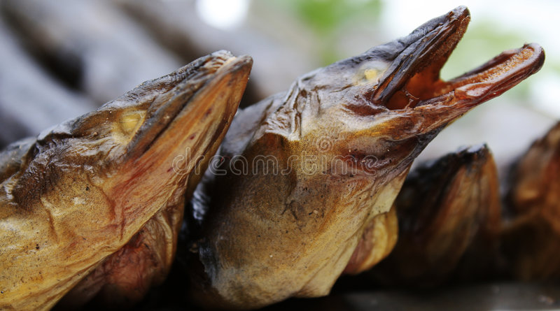Smoked Eels stock images