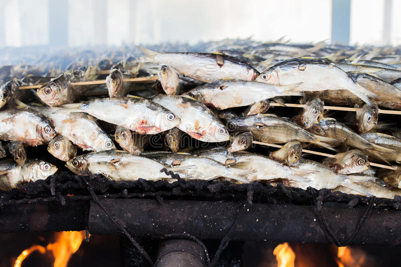 Smoked fish from fishing village food industry at krabi thailand. This is smoked fish from fishing village food industry at krabi thailand royalty free stock photos