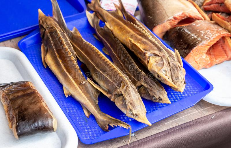Smoked fish sterlet ready to sale at the farmers market royalty free stock image