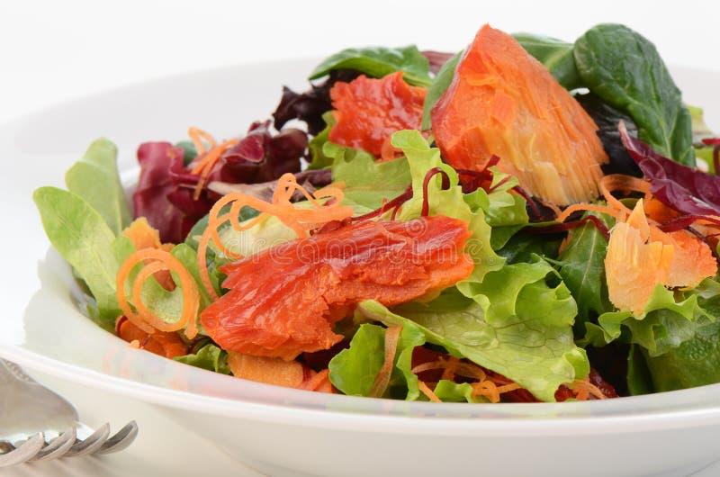 Download Smoked salmon salad stock photo. Image of greens, nutrition - 29017038