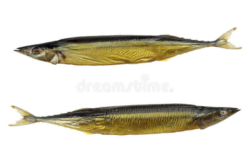 Smoked Saury Royalty Free Stock Images