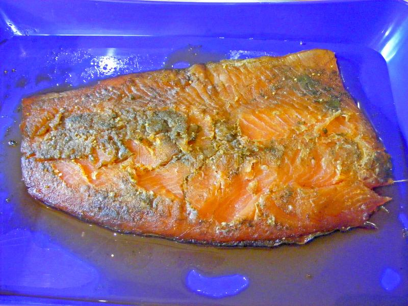 Smoked trout filet. Home made stock photography