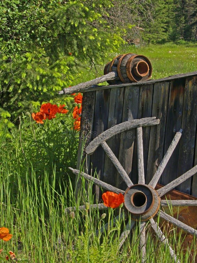 Smokehouse, wagon wheel and poppies royalty free stock photography