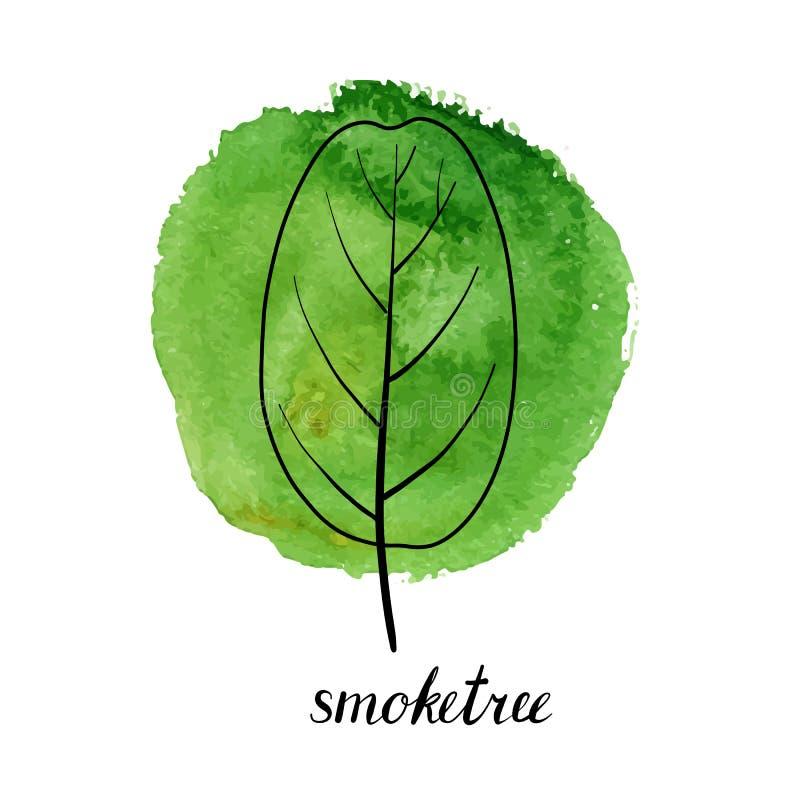 smoketree传染媒介叶子  皇族释放例证