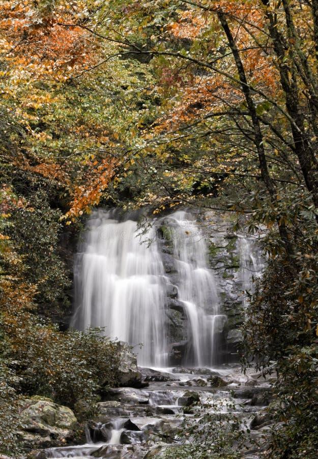 Smokey Mountain Waterfall photographie stock libre de droits