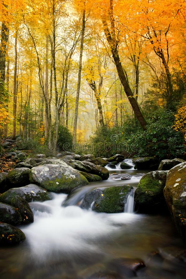 Smokey Mountains National en automne image stock