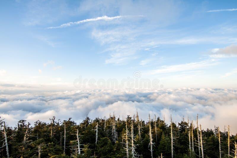 Smokey Mountains National Park stock afbeeldingen