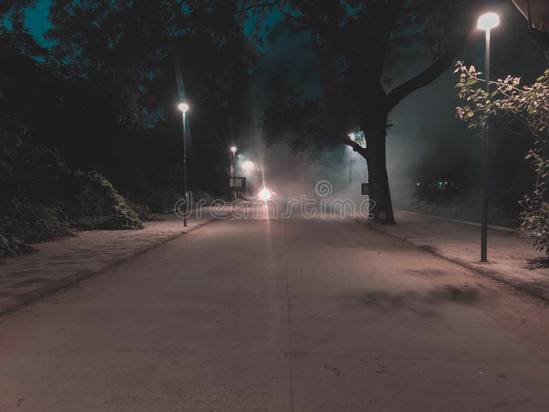 Smokey night. Smokey weather in the park royalty free stock photo