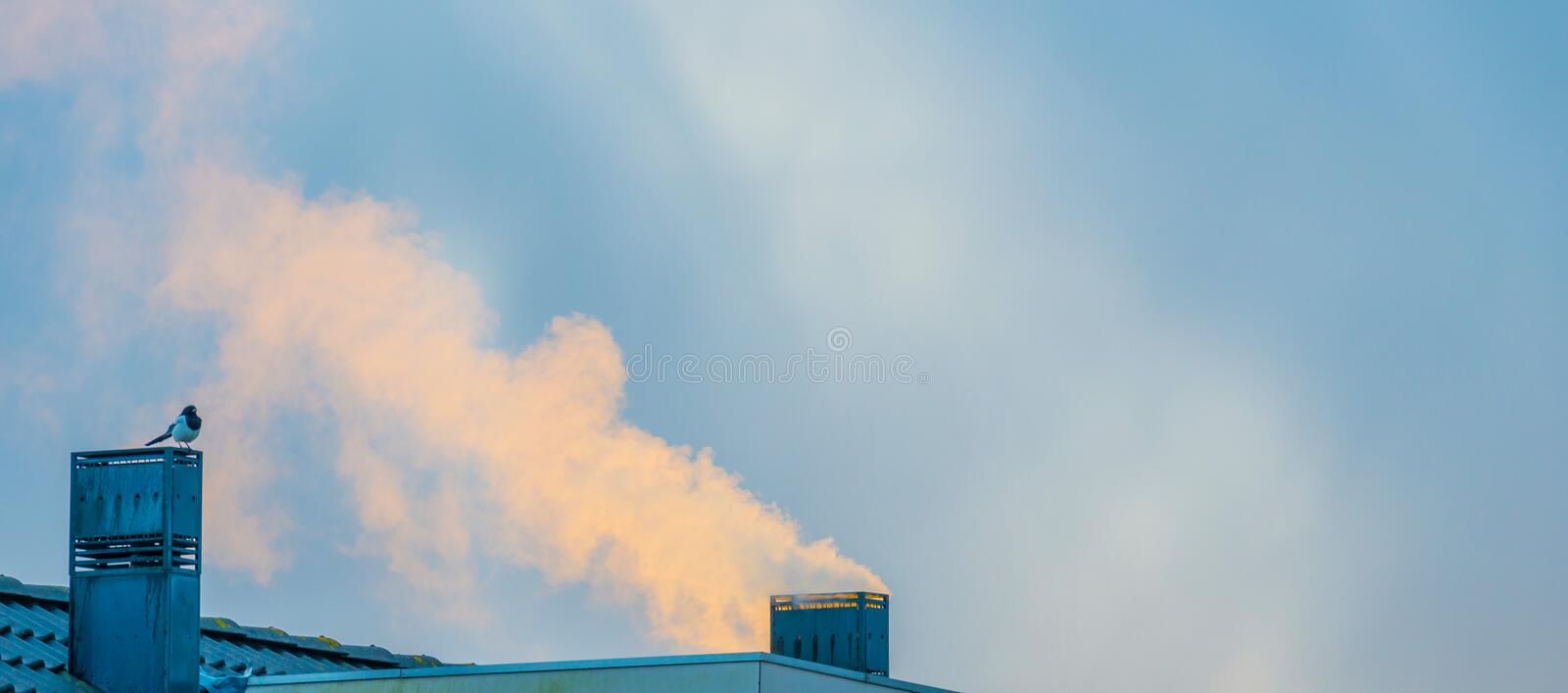 Smoking chimney on a roof at sunrise at fall. Smoking chimney on a roof at sunrise in autumn royalty free stock image