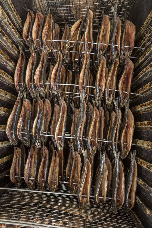 Smoking Fish - Smoked Herring stock photos