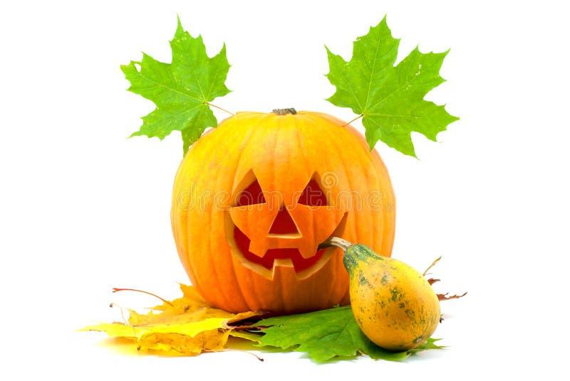 Smoking halloween pumpkin stock images