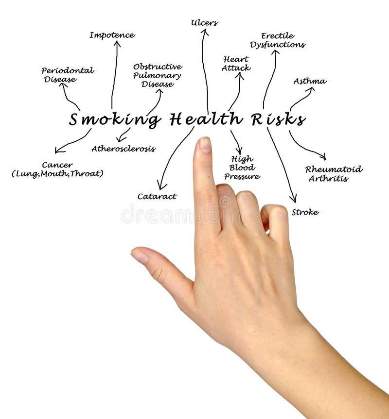 Smoking health risk. Presenting diagram of Smoking health risk royalty free stock photos