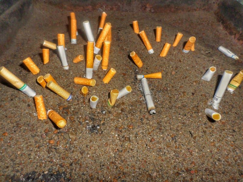 Smoking Stinks money up in smoke royalty free stock photography