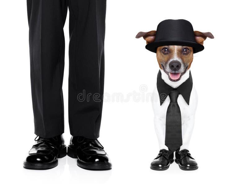 Smokinghund och ägare arkivfoton