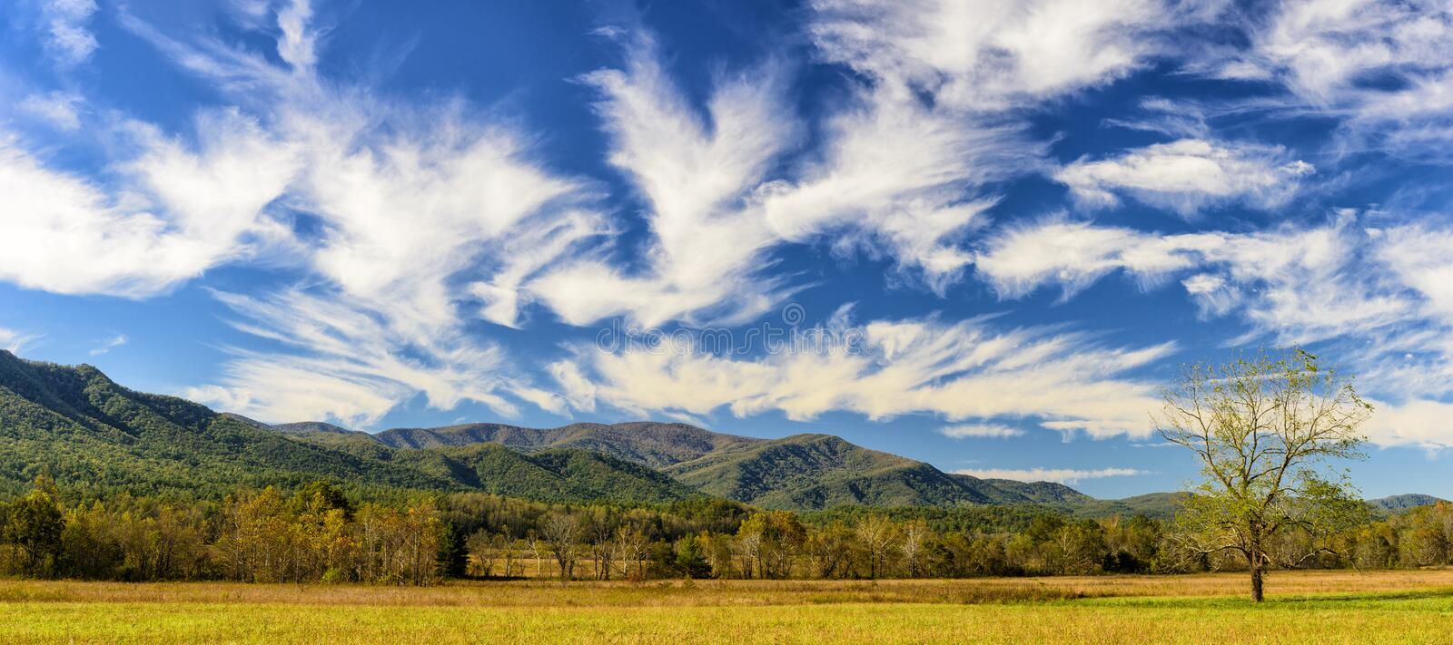 Smoky Mountain Autumn Panorama stock photos