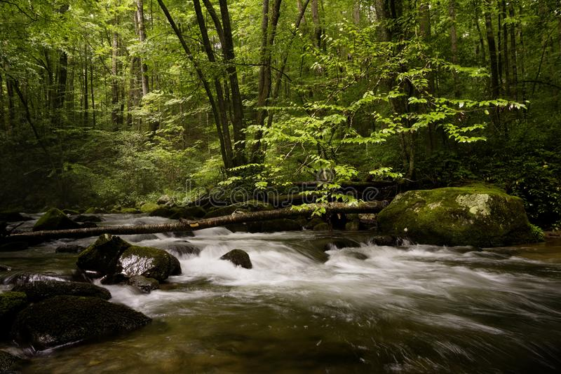 Smoky Mountain Dream. The Great Smoky Mountain National Park home to many rivers and streams. Here the river rushes by, and listen to the sound of trees rustle stock photography