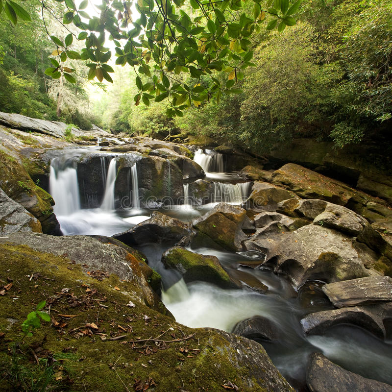 Free Smoky Mountain Forest And Waterfall Royalty Free Stock Image - 20973426