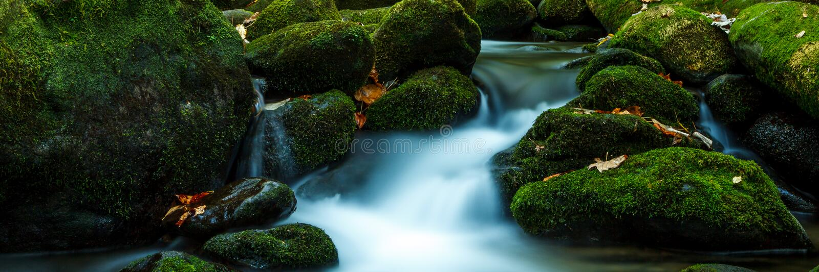 Smoky Mountain Stream. Smoky Mountain forest with waterfall stream and mossy rocks royalty free stock photography