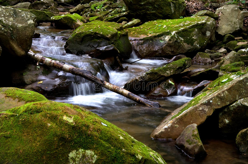 Smoky Mountain Stream. Photograph of a shaded moutain stream with small waterfalls stock photos