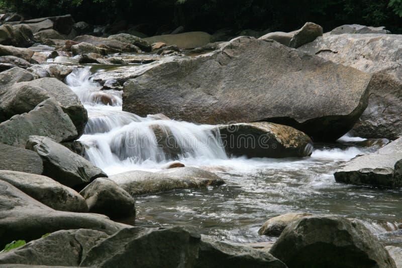 Smoky Mountain Stream royalty free stock photo