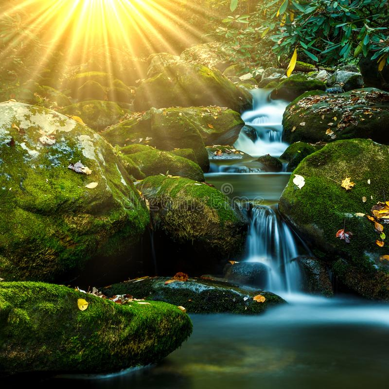 Smoky Mountain Stream. Smoky Mountain forest waterfall stream with mossy rocks and sun rays royalty free stock photos