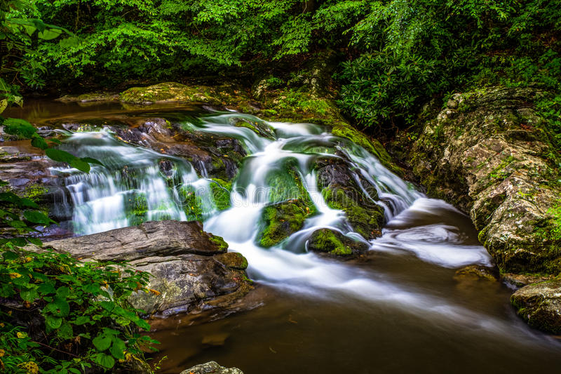 Smoky Mountain Stream. Peaceful Smoky Mountain stream located along the Roaring Fork Motor Nature Trail royalty free stock image