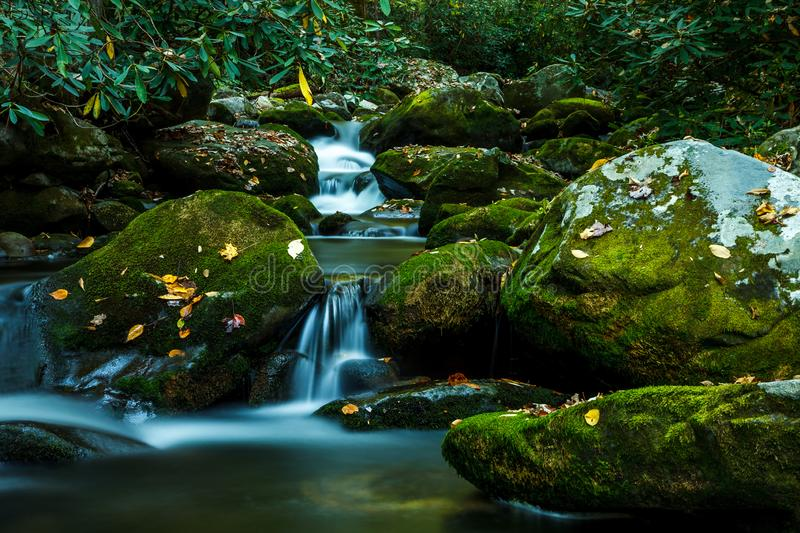 Smoky Mountain Stream. Smoky Mountain forest with waterfall stream and mossy rocks stock photo