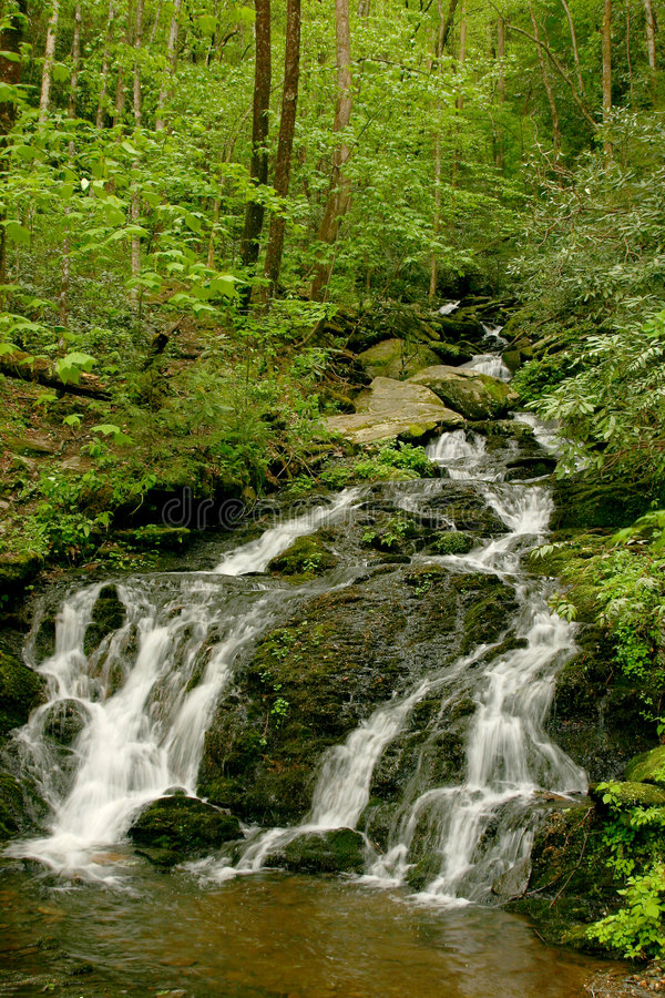 Smoky Mountain Waterfall Stock Photography