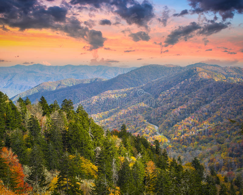 Smoky Mountains. Autumn morning in the Smoky Mountains National Park royalty free stock photos