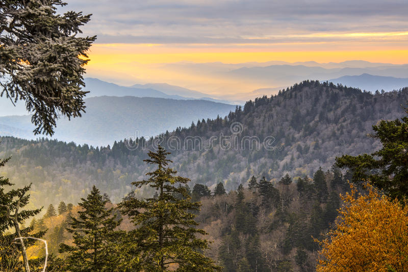 Smoky Mountains. Autumn morning in the Smoky Mountains National Park royalty free stock photography