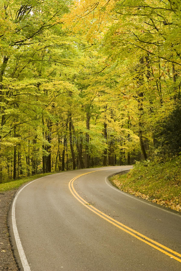 Smoky Mountains Fall Colors. A road winds through the Smoky Mountain National Park as the fall colors explode stock image