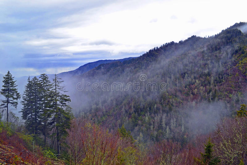 Smoky Mountains. Fog is rising up in the Smoky Mountains National Park, Blue Ridge Parkway royalty free stock image