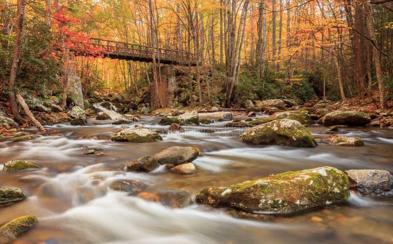Smoky Mountains National Park royalty free stock photo