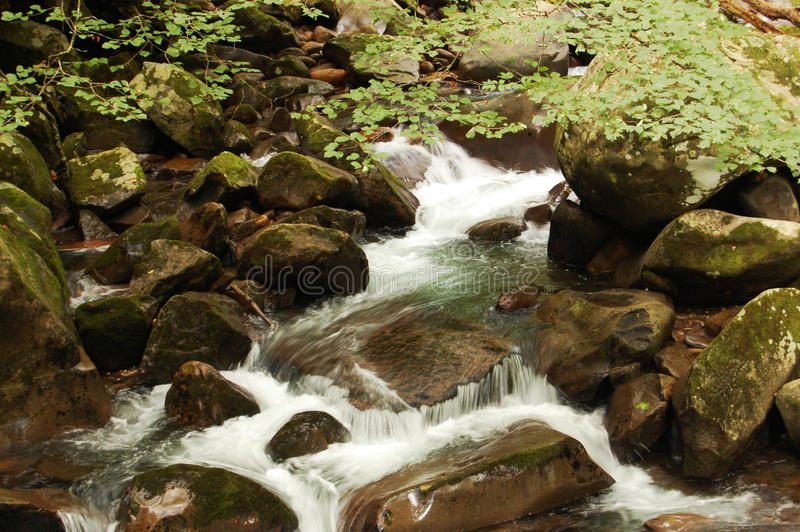 Smoky Mountains water flowing over rocks stock photo