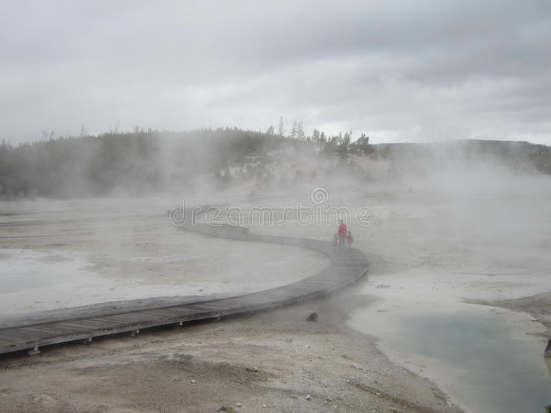 Smoky walk in Yellowstone National Park royalty free stock photo