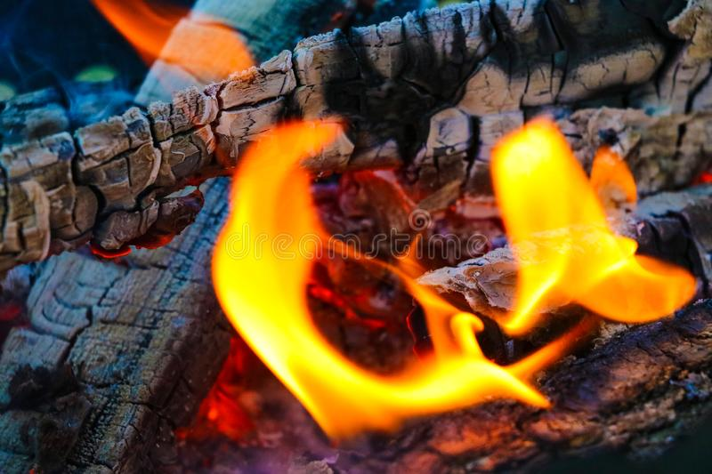 Smoldering coals from the fire. A fading bonfire. Close-up. Texture royalty free stock photography