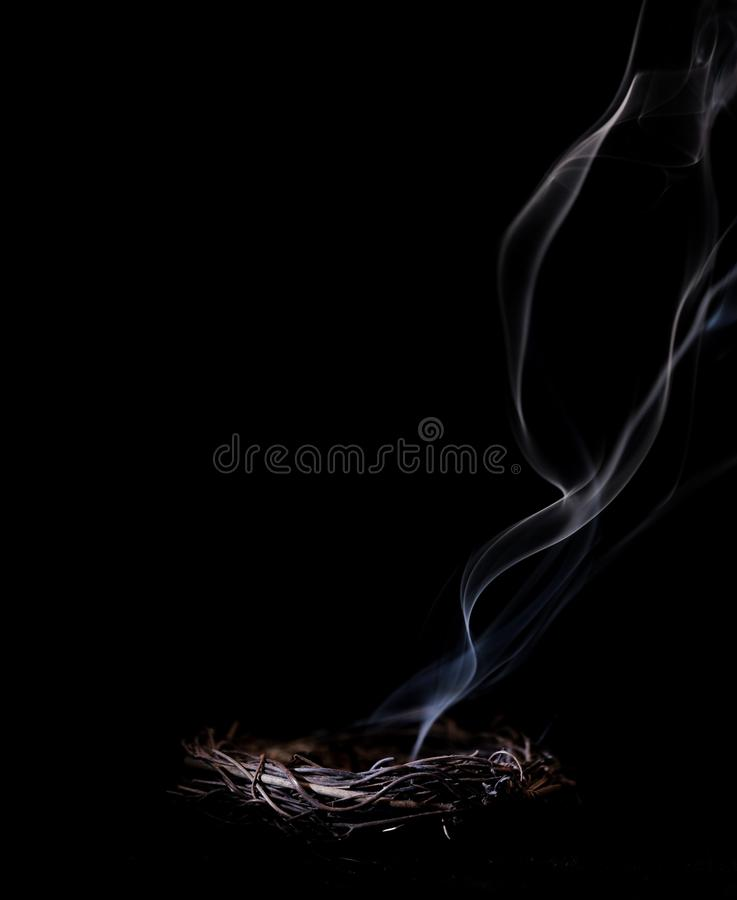 Smoldering Nest. Smoke from an extinguished fire in a nest stock photos