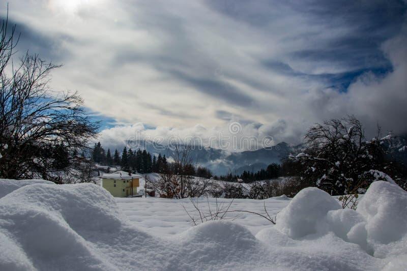Smolyan, Bulgaria, montañas de Rhodope - 01/28/2019 bosque del invierno, paisaje en el invierno, árboles nevados de la montaña In imagen de archivo libre de regalías
