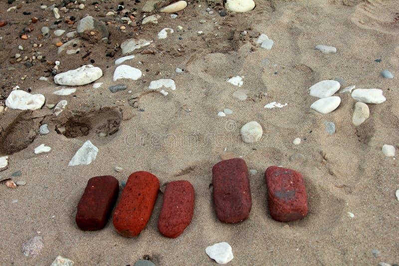 Smooth mönstrade och färgrika våta stenar på en sandig strand i Florida royaltyfri fotografi